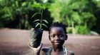 Tree-planting project - photo: African Business